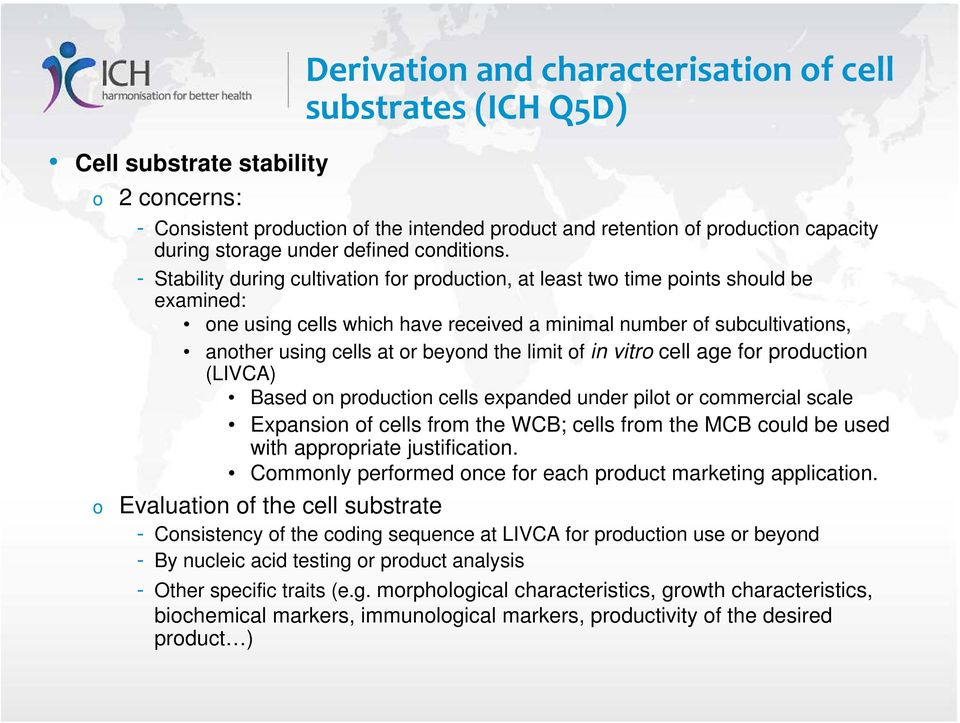 - Stability during cultivation for production, at least two time points should be examined: one using cells which have received a minimal number of subcultivations, another using cells at or beyond