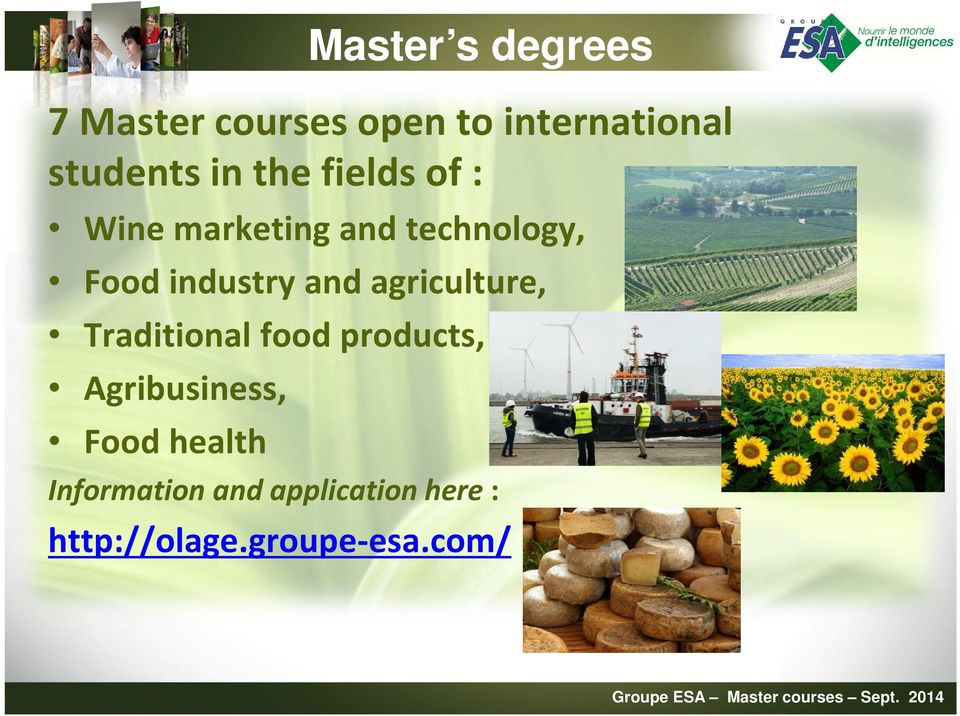 and agriculture, Traditional food products, Agribusiness, Food