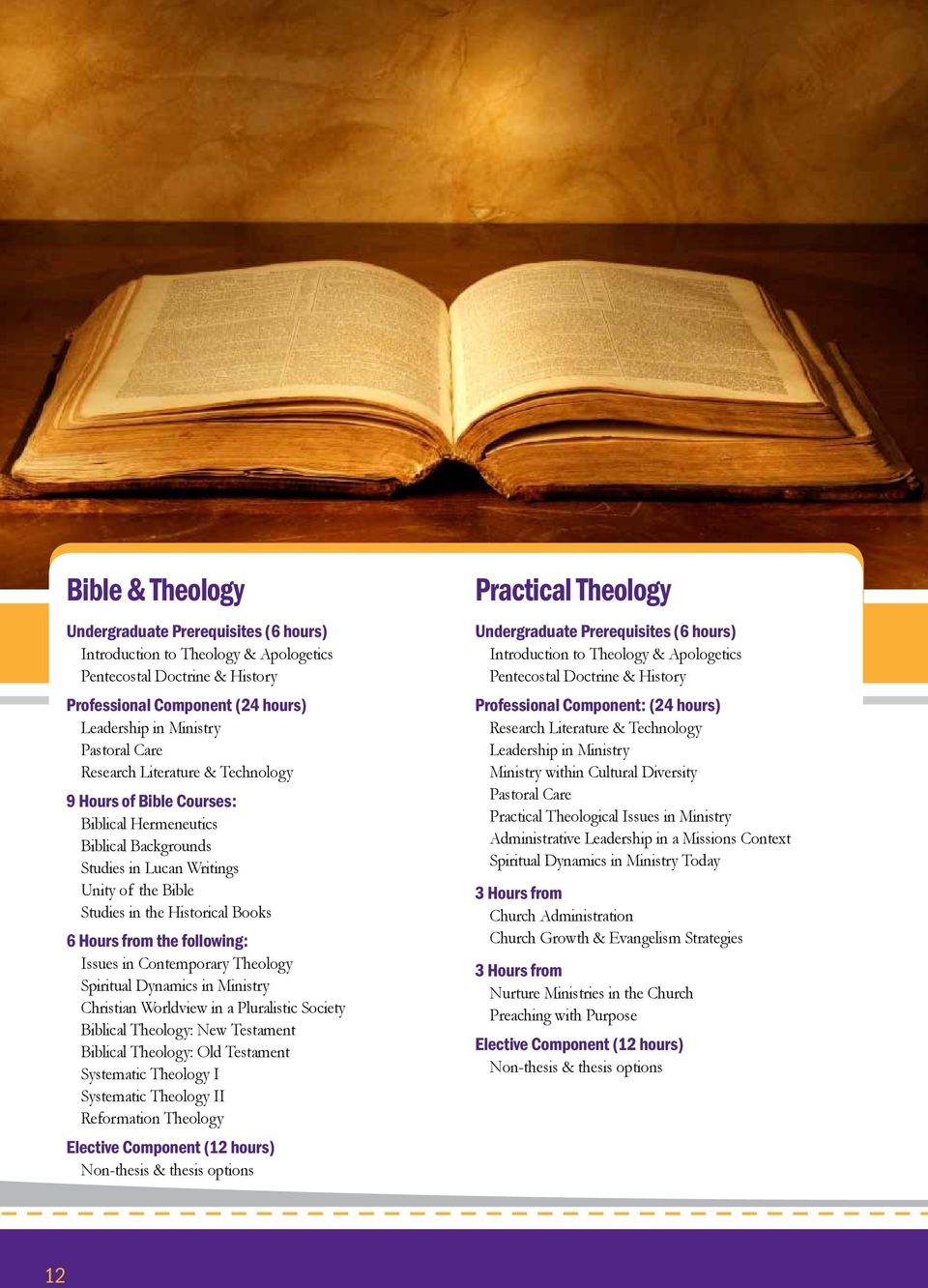 Theology Spiritual Dynamics in Ministry Christian Worldview in a Pluralistic Society Biblical Theology: New Testament Biblical Theology: Old Testament Systematic Theology I Systematic Theology II