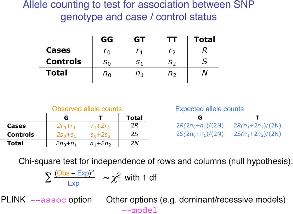 2N Expected allele counts G T 2R(2n 0 +n 1 )/(2N) 2R(n 1 +2n 2 )/(2N) 2S(2n 0 +n 1 )/(2N) 2S(n 1 +2n 2 )/(2N) Chi-square test for independence