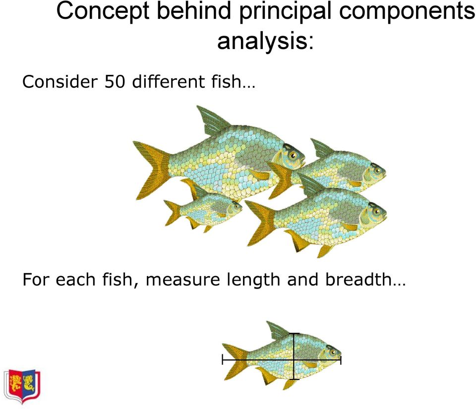 Consider 50 different fish
