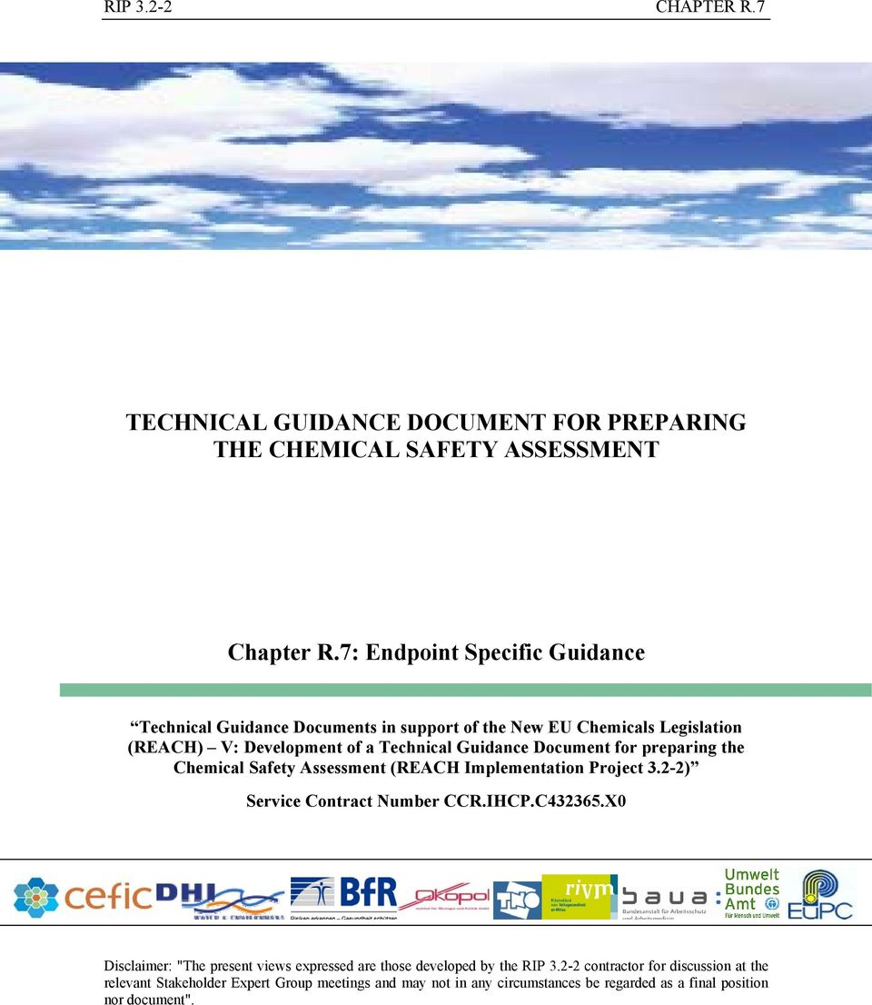 Guidance Document for preparing the Chemical Safety Assessment (REACH Implementation Project 3.2-2) Service Contract Number CCR.IHCP.C432365.