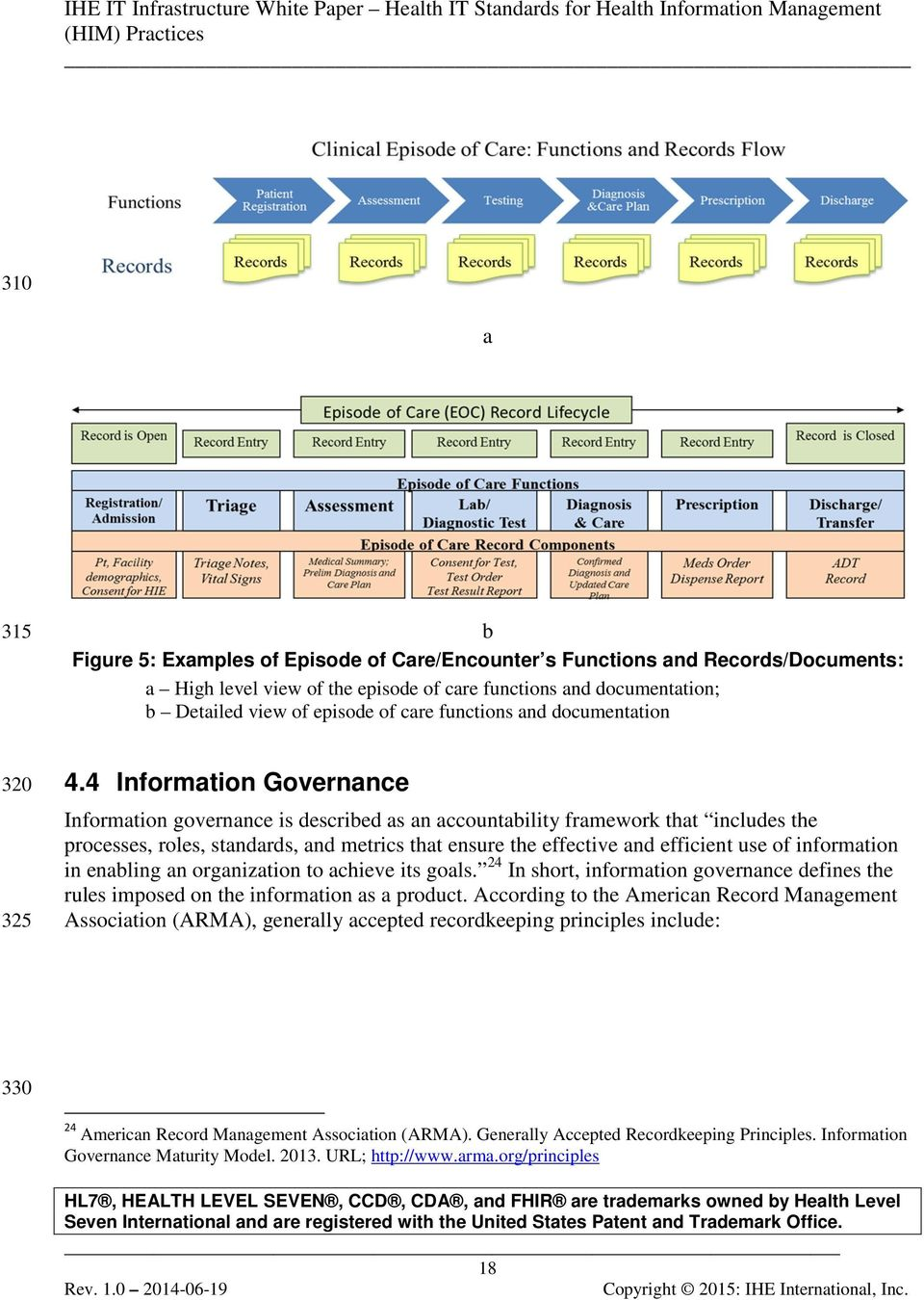 4 Information Governance Information governance is described as an accountability framework that includes the processes, roles, standards, and metrics that ensure the effective and efficient use of