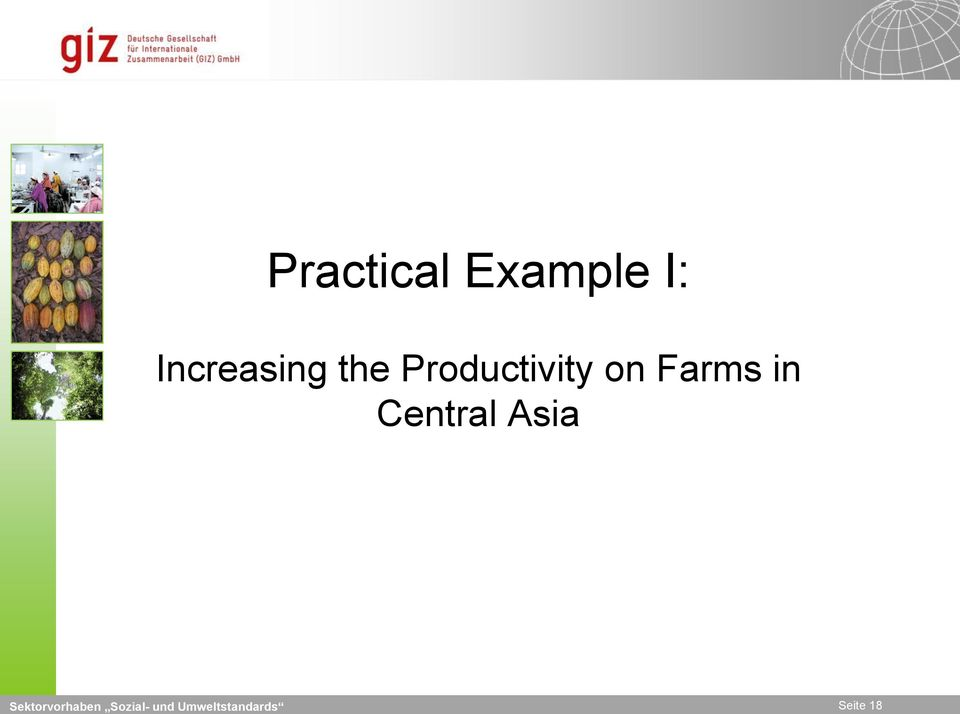 Productivity on Farms