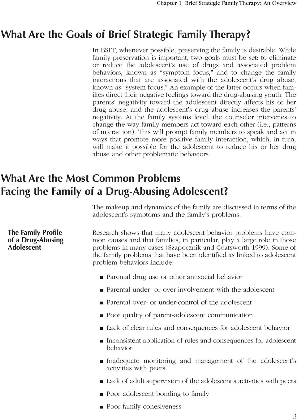 interactions that are associated with the adolescent s drug abuse, known as system focus. An example of the latter occurs when families direct their negative feelings toward the drug-abusing youth.