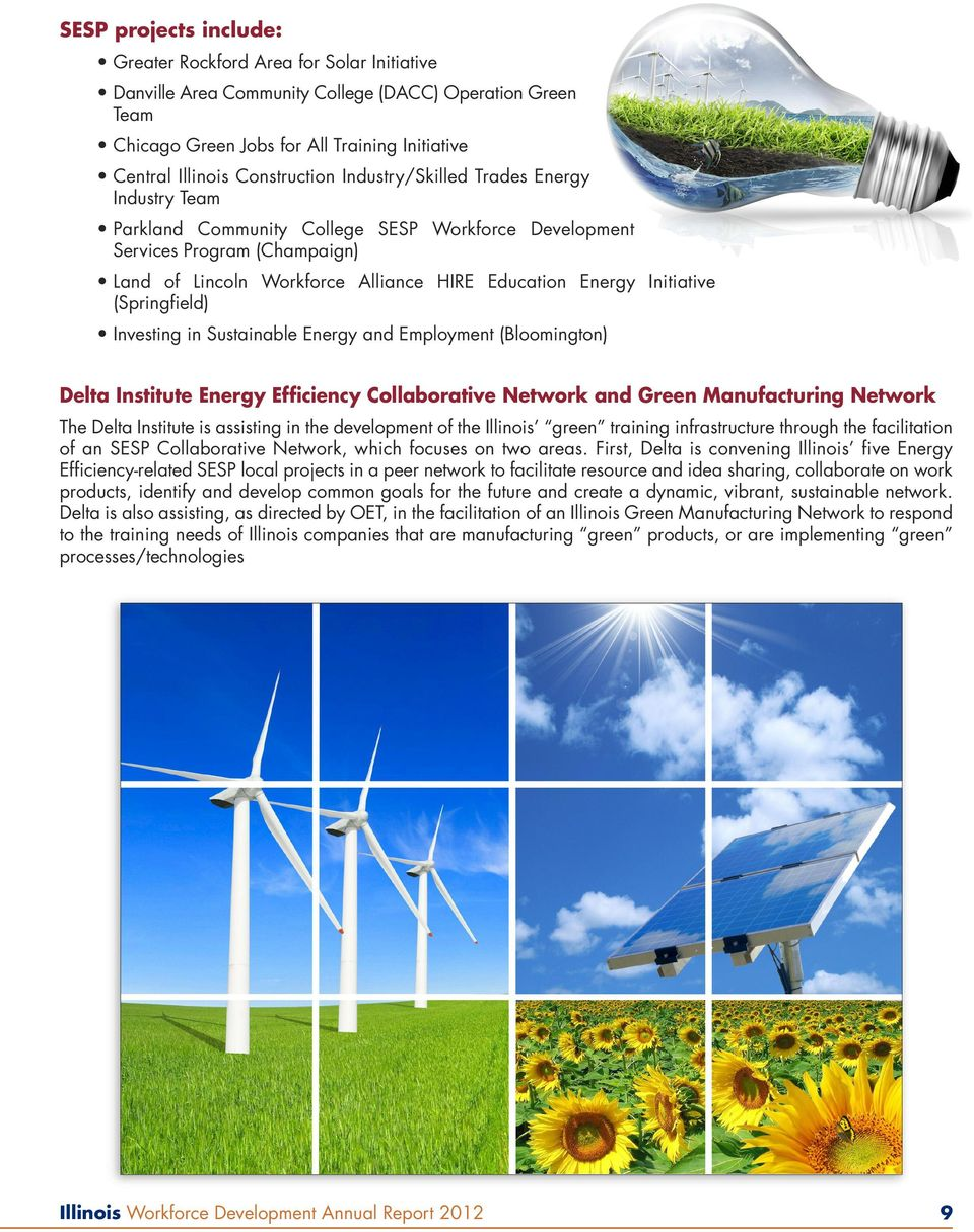 Initiative (Springfield) Investing in Sustainable Energy and Employment (Bloomington) Delta Institute Energy Efficiency Collaborative Network and Green Manufacturing Network The Delta Institute is