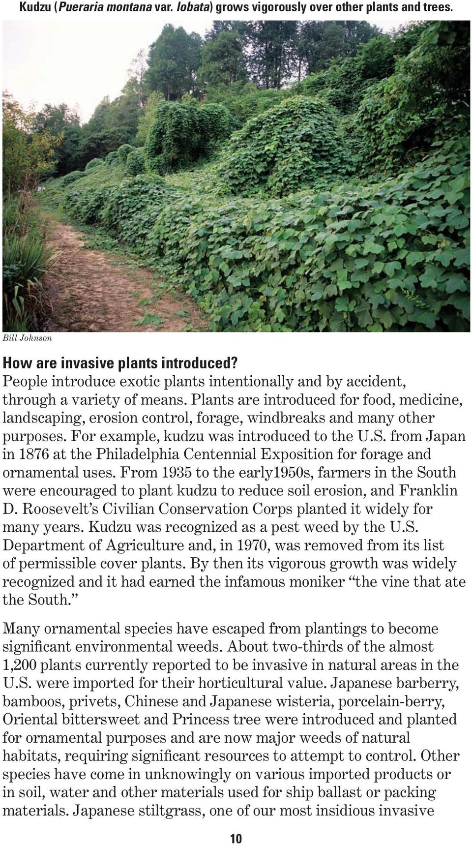 Plants are introduced for food, medicine, landscaping, erosion control, forage, windbreaks and many other purposes. For example, kudzu was introduced to the U.S.