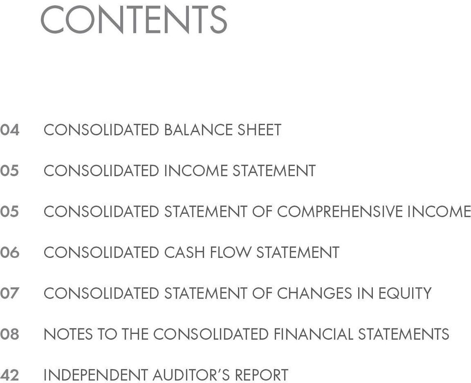 Consolidated Cash Flow Statement Consolidated Statement of Changes IN