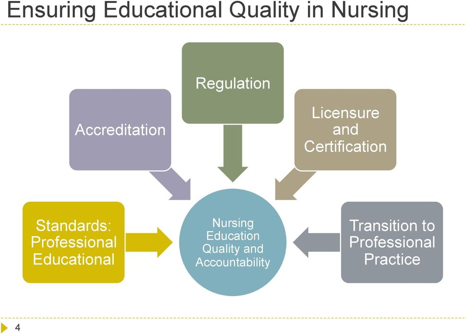 Professional Educational Nursing Education Quality