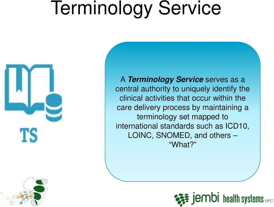 within the care delivery process by maintaining a terminology set