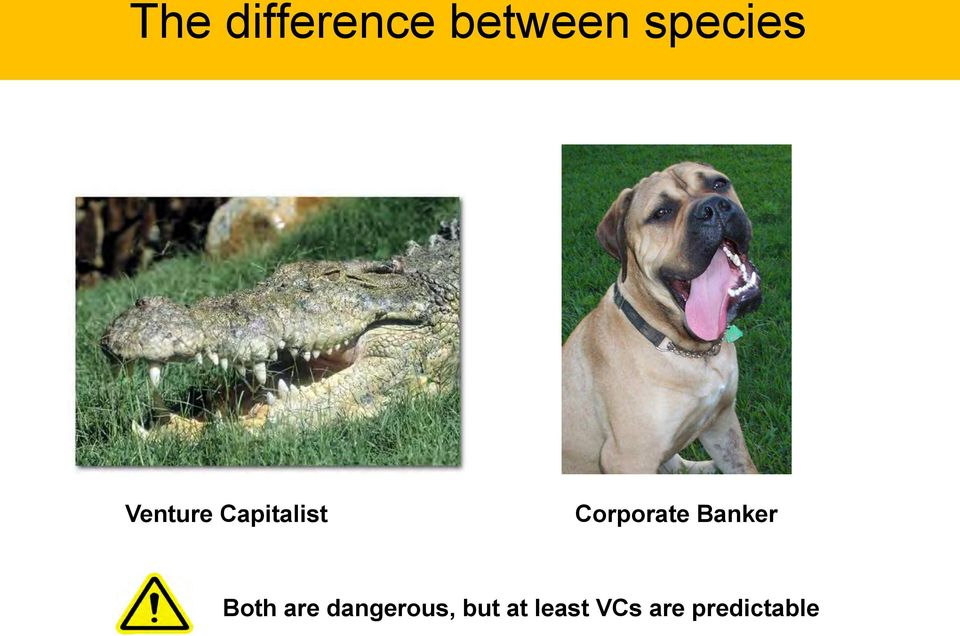 Corporate Banker Both are