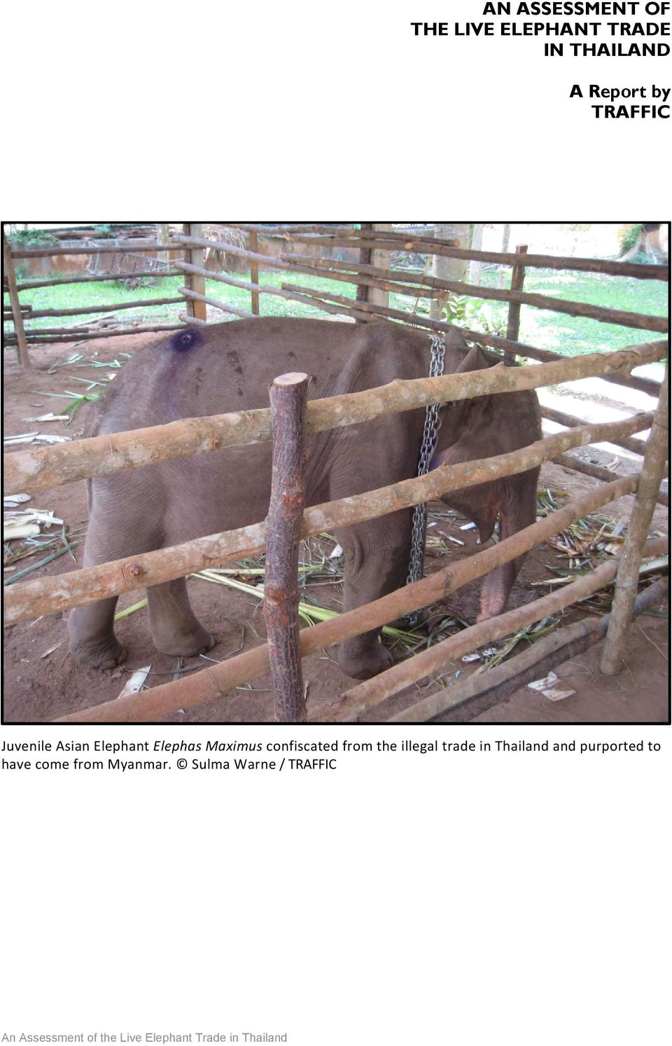 illegal trade in Thailand and purported to have come from Myanmar.