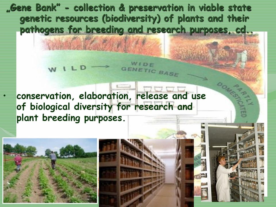 breeding and research purposes, cd.