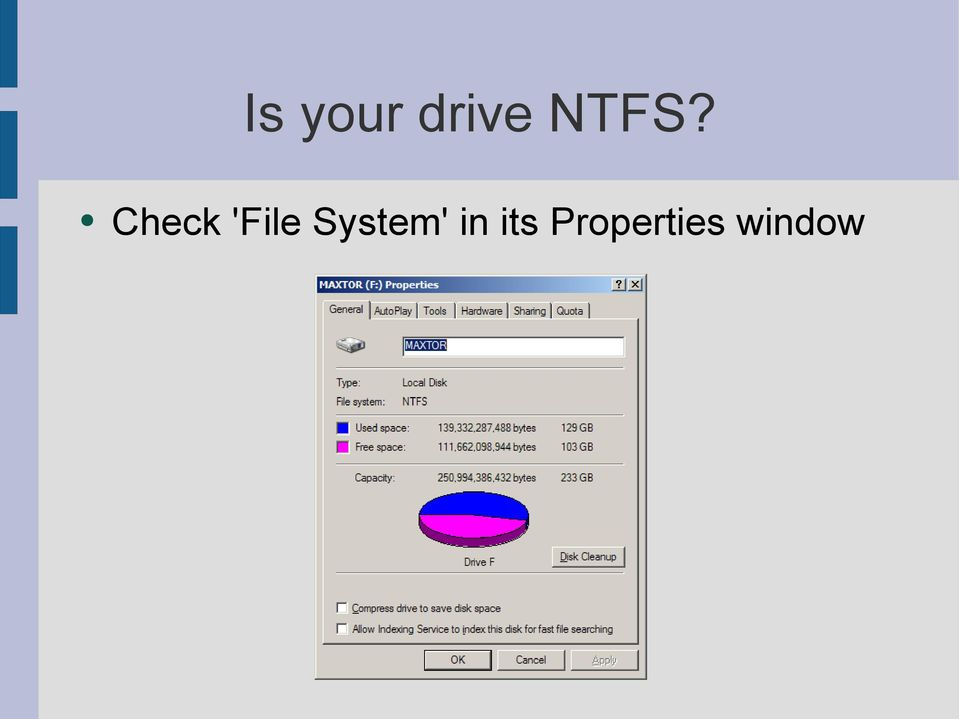'File System'