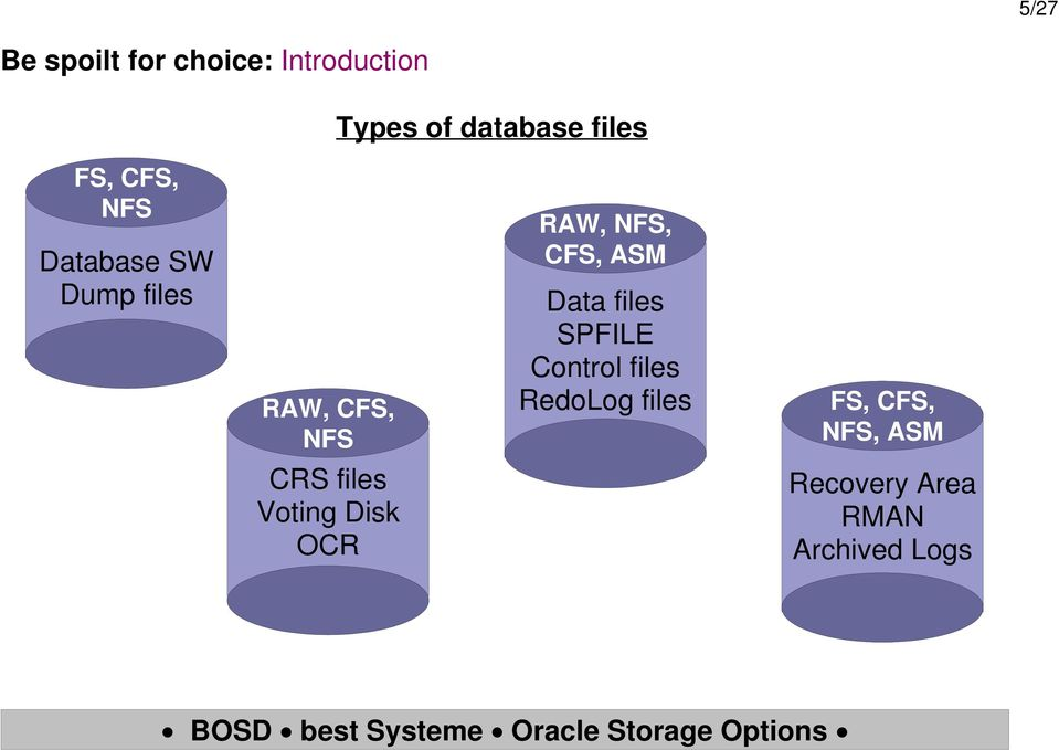 ASM Data files SPFILE Control files RedoLog files FS, CFS,,