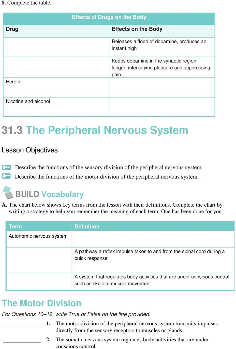 Fancy The Peripheral Nervous System Includes Motif Human Anatomy