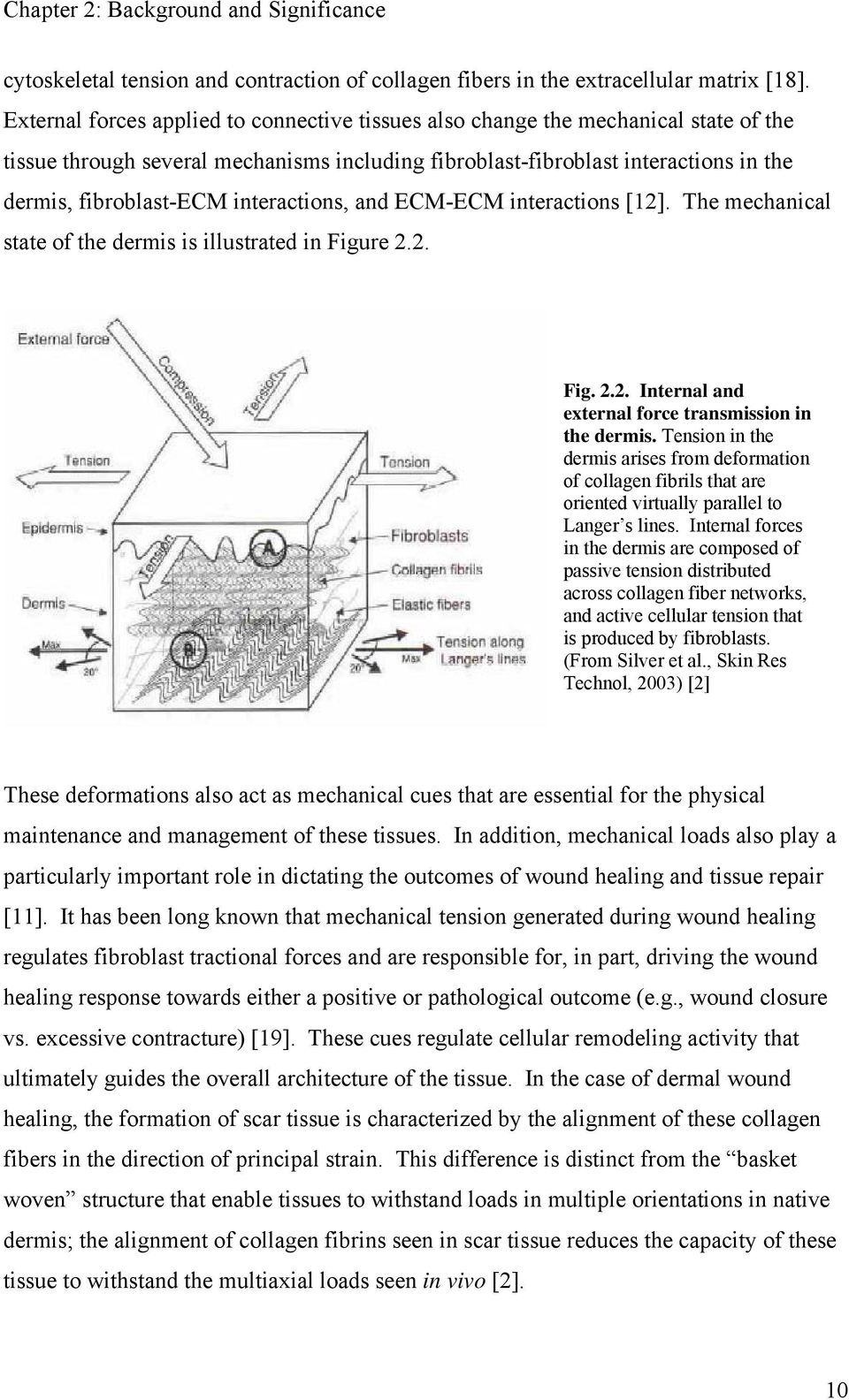 interactions, and ECM-ECM interactions [12]. The mechanical state of the dermis is illustrated in Figure 2.2. Fig. 2.2. Internal and external force transmission in the dermis.