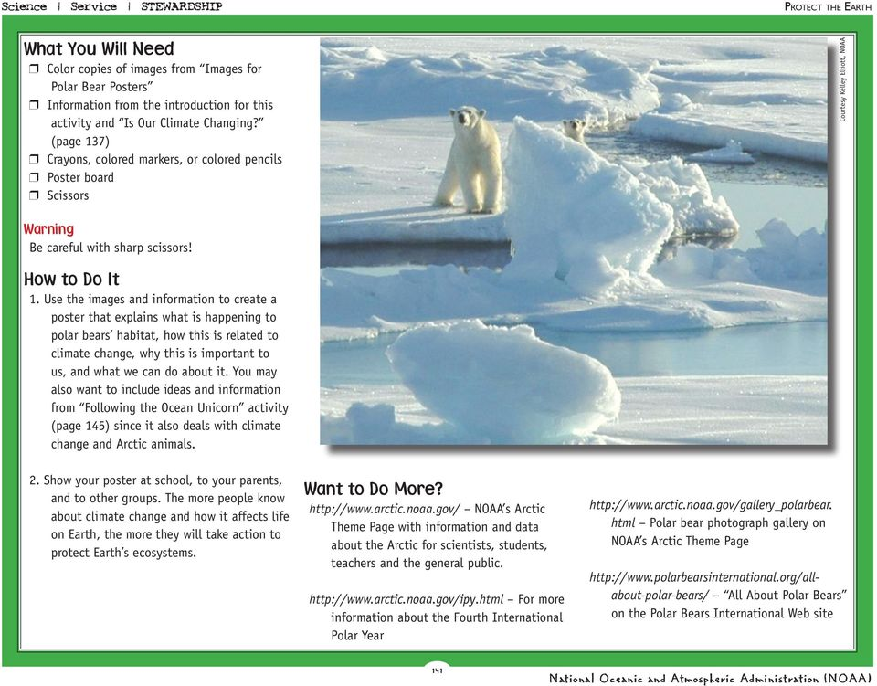 Use the images and information to create a poster that explains what is happening to polar bears habitat, how this is related to climate change, why this is important to us, and what we can do about
