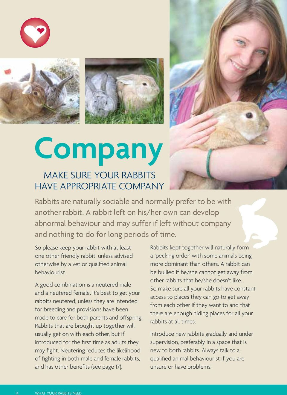 So please keep your rabbit with at least one other friendly rabbit, unless advised otherwise by a vet or qualified animal behaviourist. A good combination is a neutered male and a neutered female.