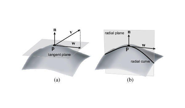 Towards suggestive contours, radial curvature Curvature of 0 are either an inflection point or a line. The radial curvature of surface S in p: intersect S with plane that a.