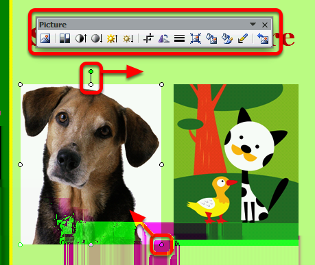 Images from a file Navigate to your saved image, select it and click Insert Images from Clip Art Type in a search word or two, click Go and wait (it can take a while for PowerPoint to find clip art
