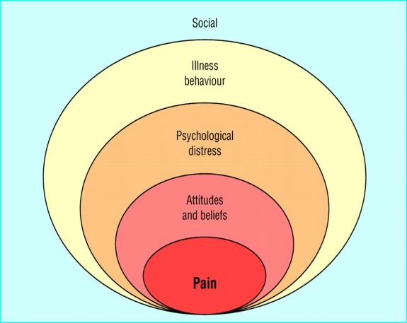 The importance of psychosocial factors Strongly influence on musculoskeletal disorders, chronic pain By 12 weeks, more