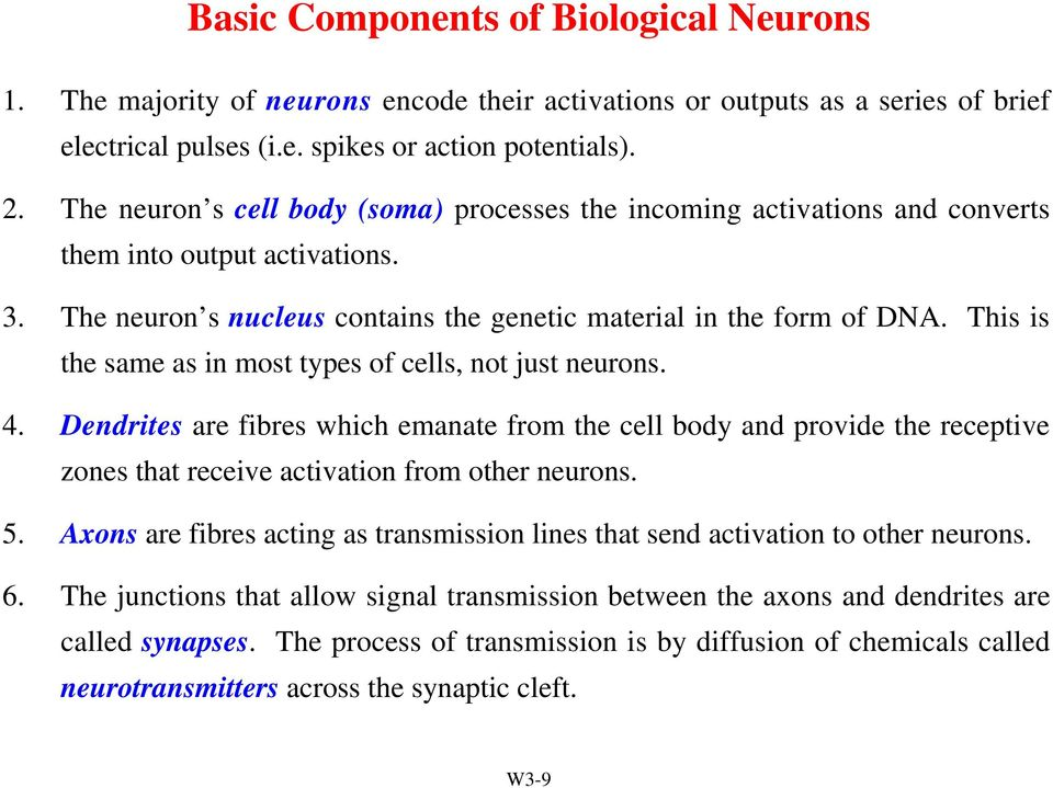 This is the same as in most types of cells, not just neurons. 4. Dendrites are fibres which emanate from the cell body and provide the receptive zones that receive activation from other neurons. 5.