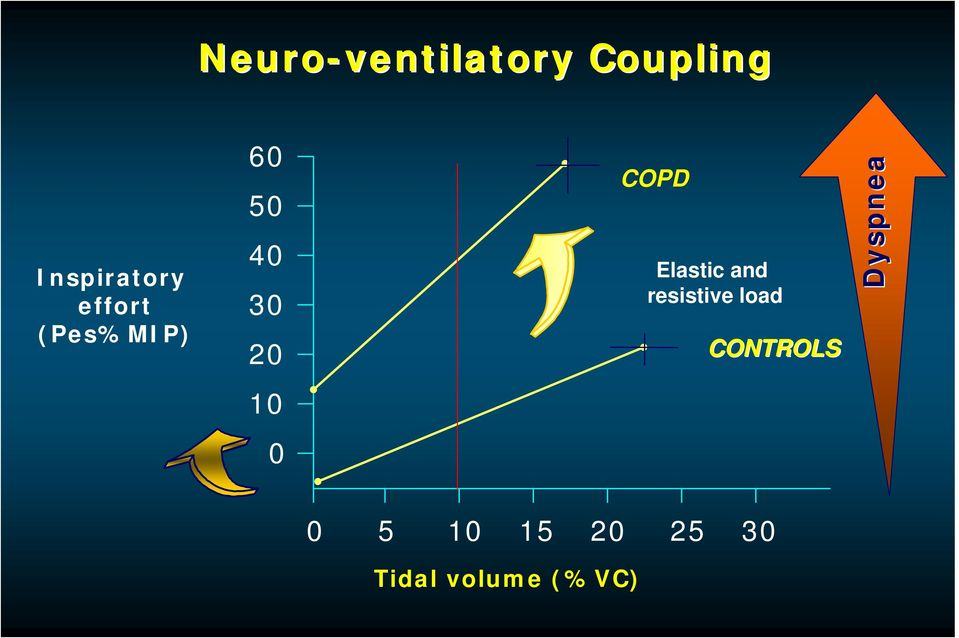 COPD Elastic and resistive load CONTROLS