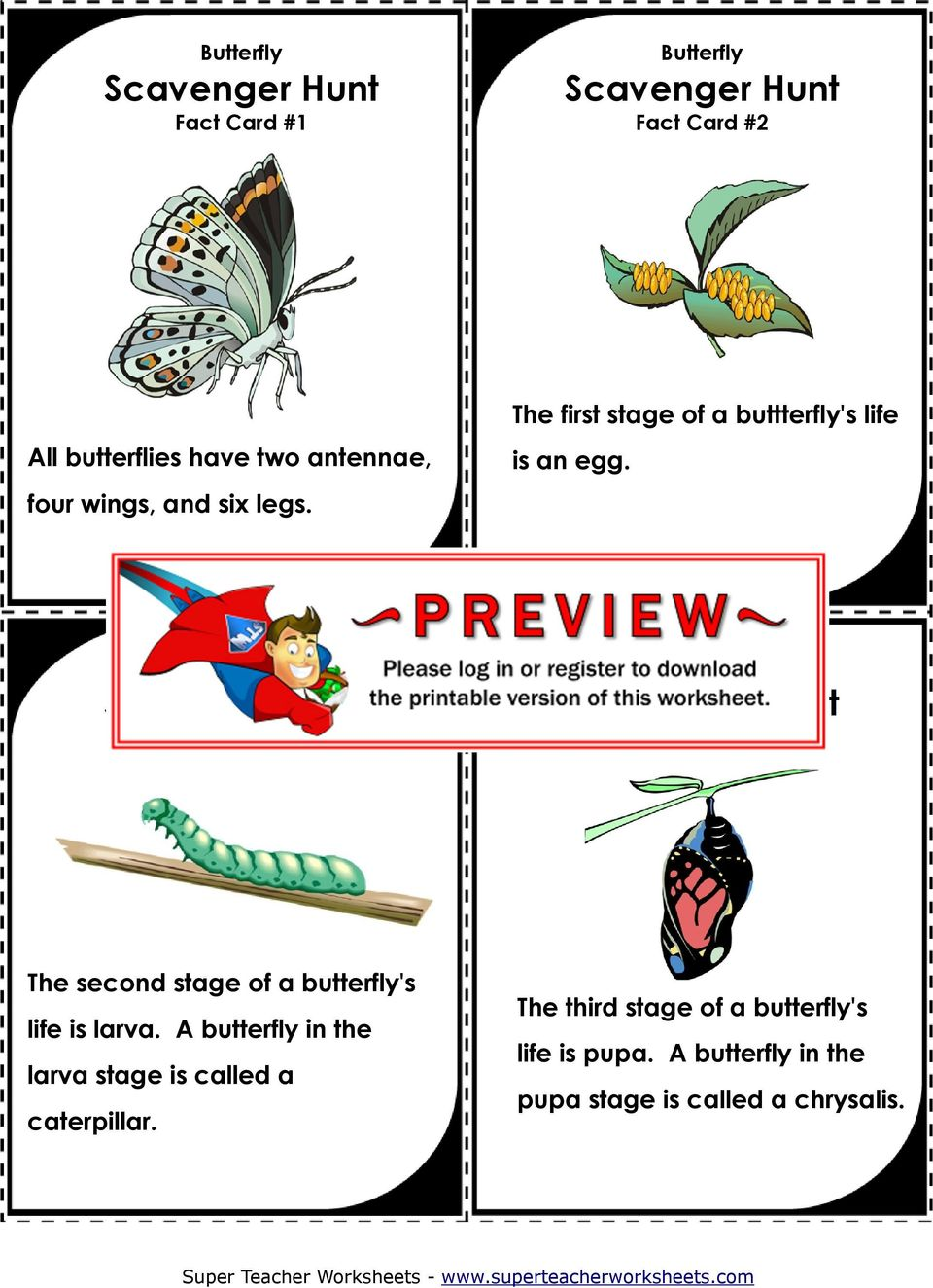 Fact Card #3 Fact Card #4 The second stage of a butterfly's life is larva.