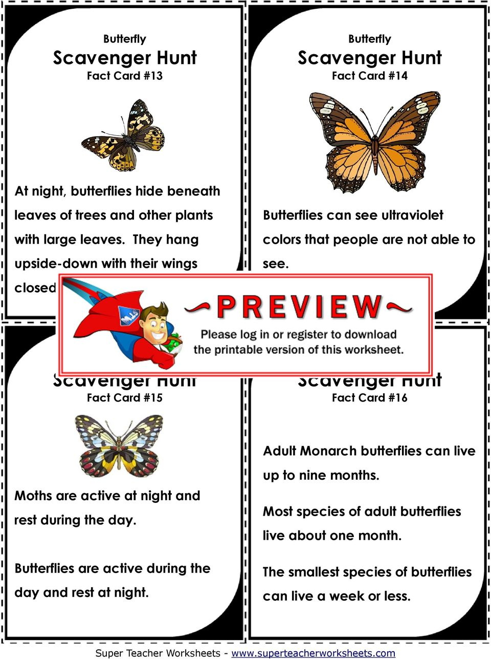 Fact Card #15 Fact Card #16 Adult Monarch butterflies can live Moths are active at night and rest during the day.