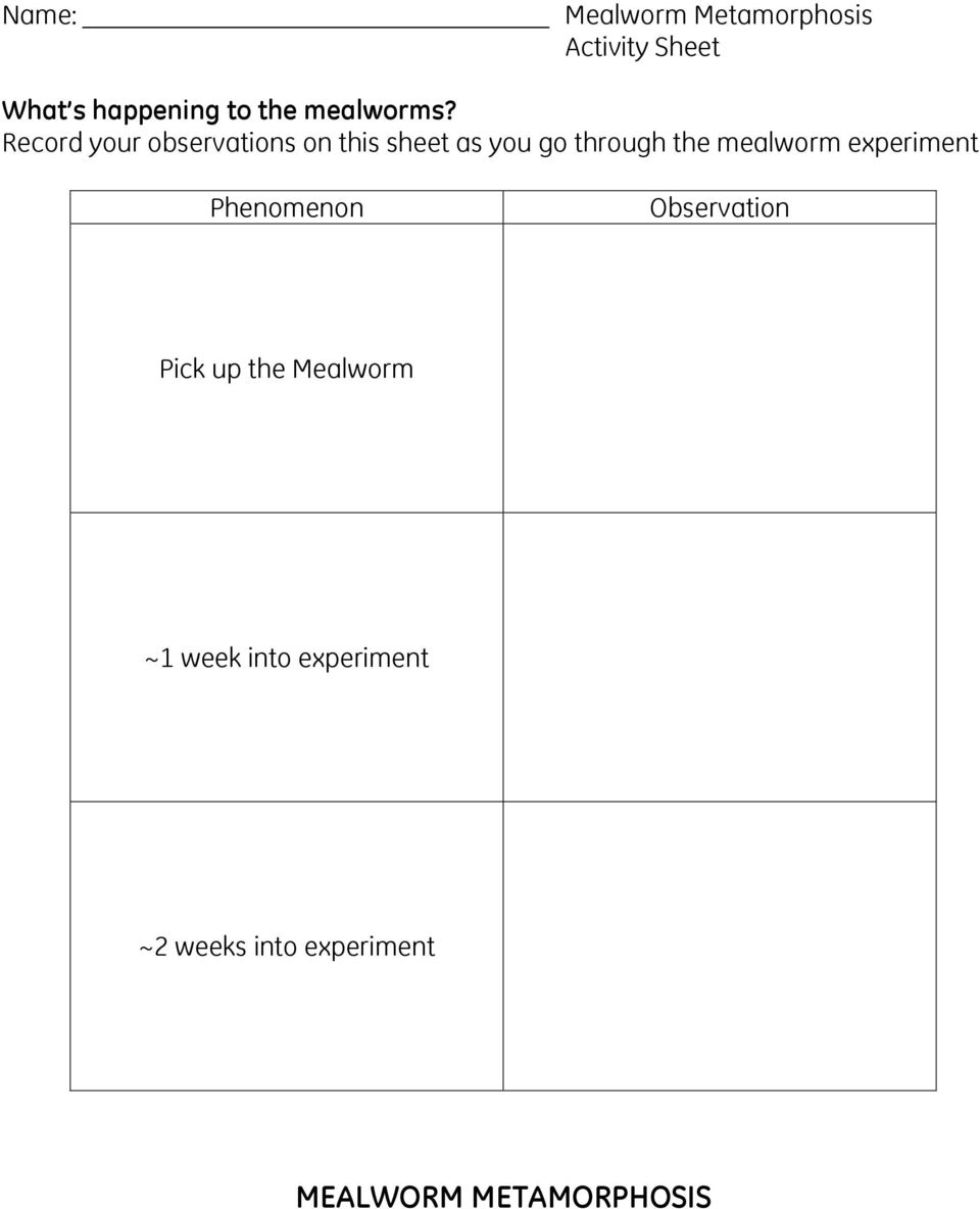 Record your observations on this sheet as you go through the