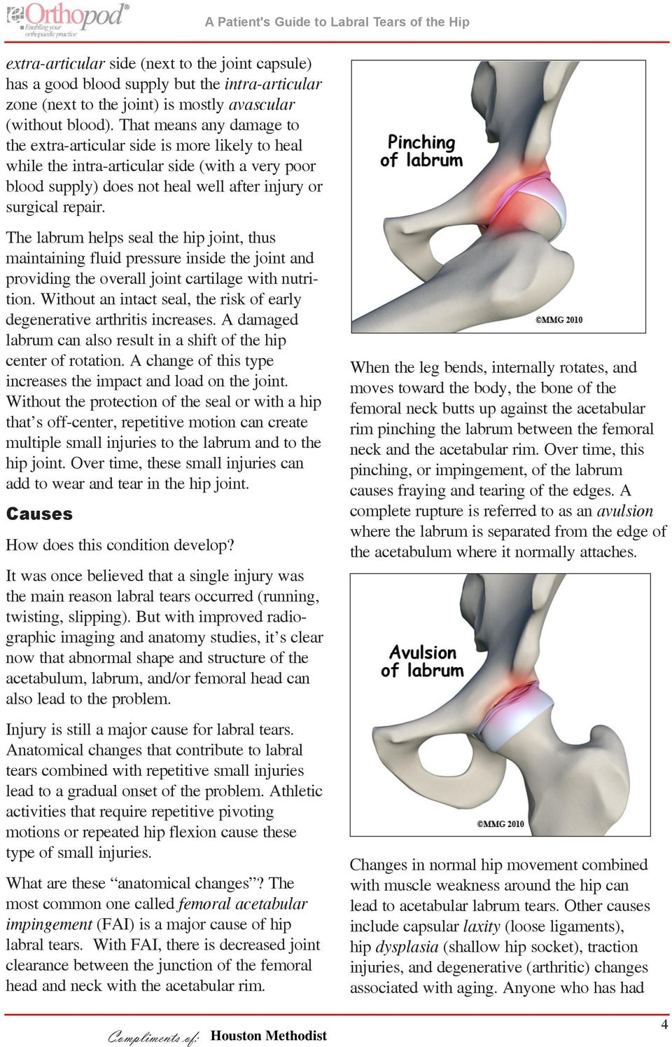 The labrum helps seal the hip joint, thus maintaining fluid pressure inside the joint and providing the overall joint cartilage with nutrition.