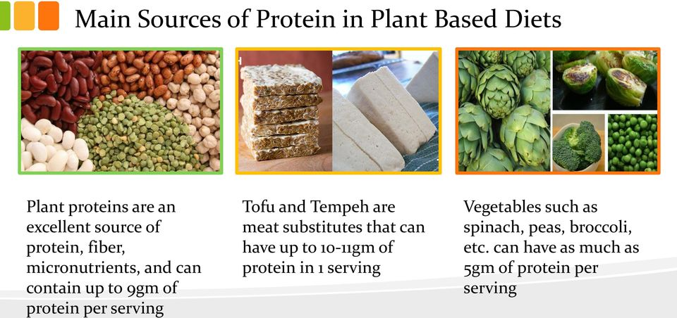 and Tempeh are meat substitutes that can have up to 10-11gm of protein in 1 serving