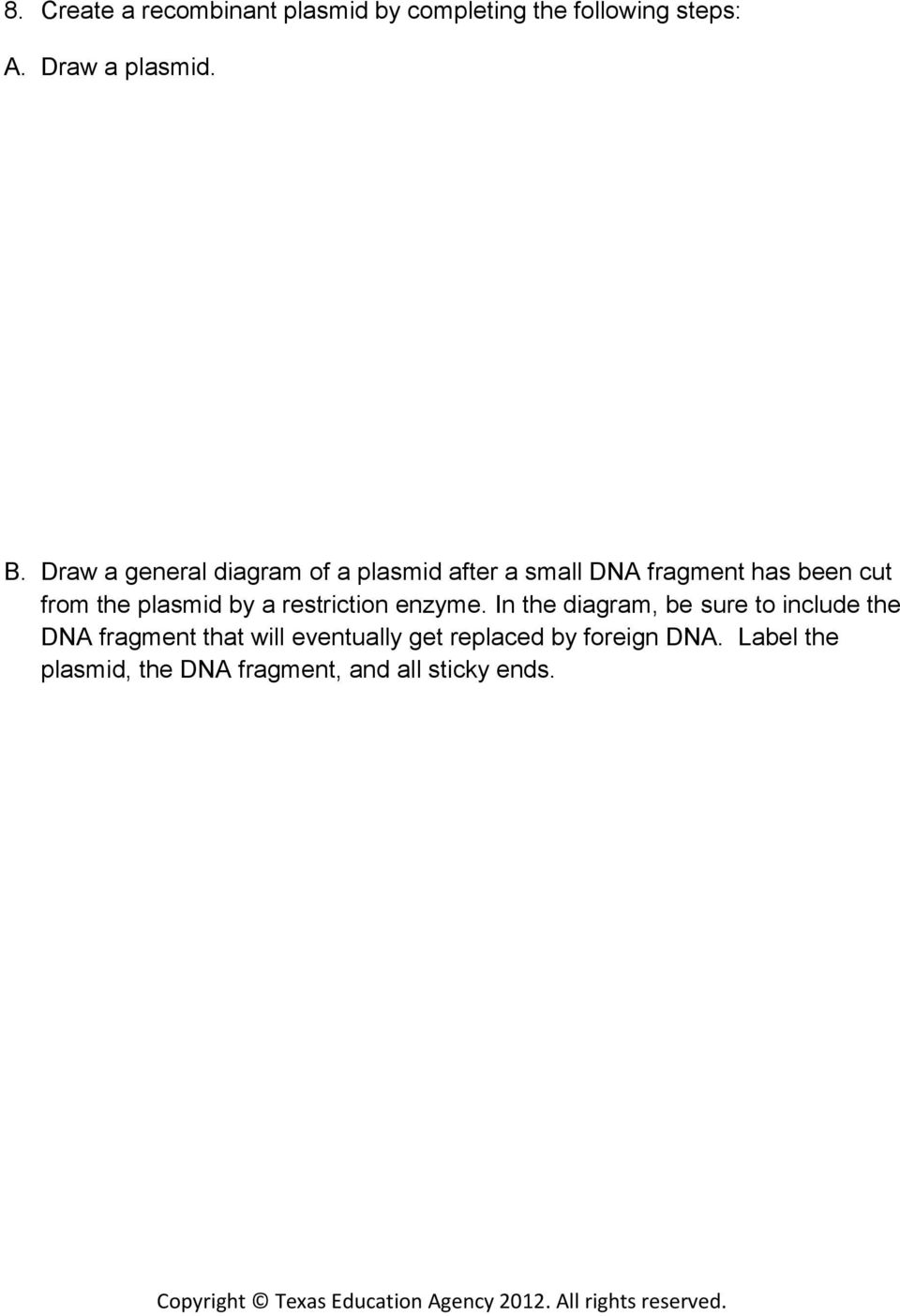 plasmid by a restriction enzyme.