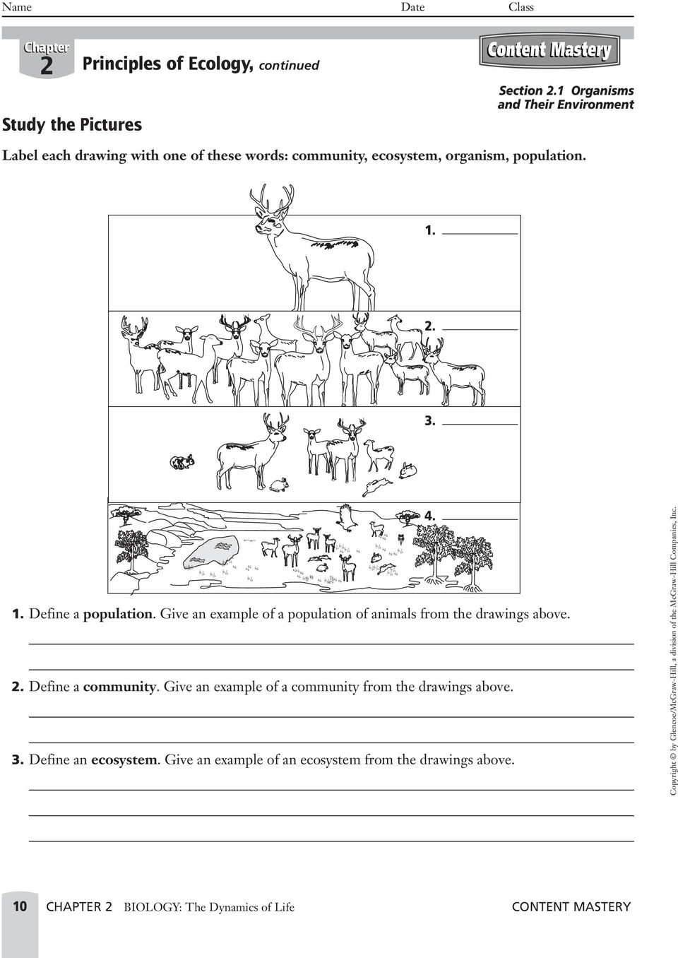 Sample answer: The deer are a population.. Define a community. Give an example of a community from the drawings above. A community is made up of populations that interact with each other.