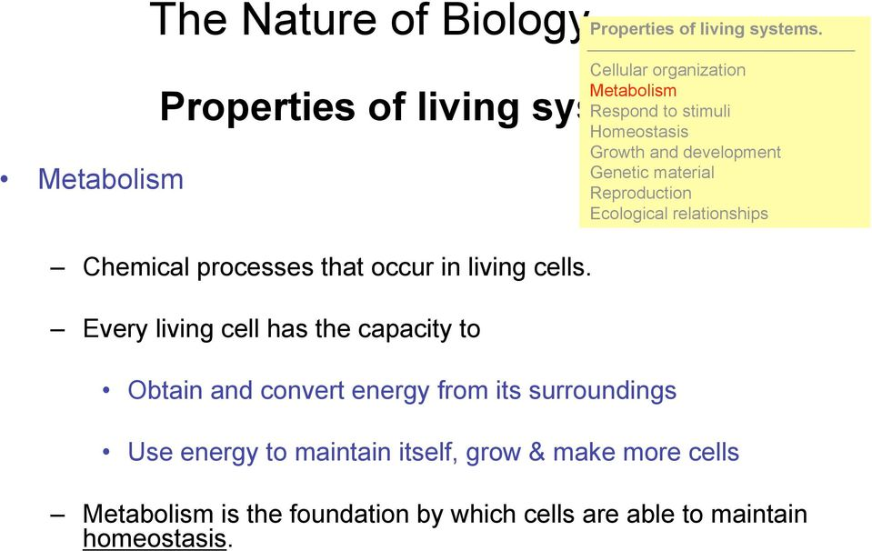 Every living cell has the capacity to Obtain and convert energy from its surroundings Cellular organization Metabolism
