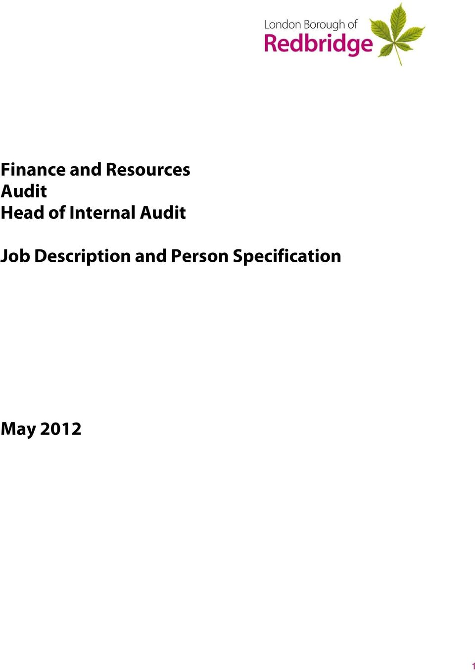 Audit Job Description