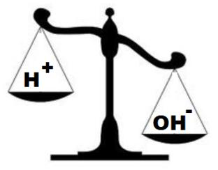 As you dilute an acid, the ph rises towards neutral, 7, and the acidity decreases/ the concentration of H + ions decreases As you dilute an alkali, the ph falls towards neutral, 7, the alkalinity