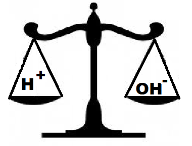 29 Concentration of Ions NEUTRAL Water and neutral solutions contain equal concentrations of H + and OH - ions. This means that the concentration of H + and OH - ions is the same.