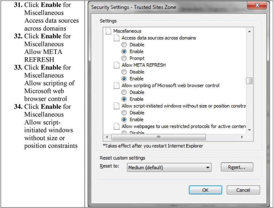 Click Enable for Miscellaneous Allow scripting of Microsoft web browser