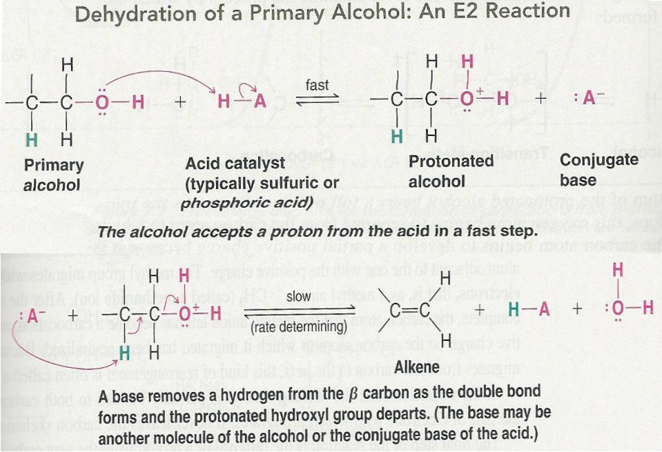 7.7 - Acid-Catalyzed Dehydration of Alcohols - Most alcohols undergo dehydration to form an alkene when heated with a strong acid - The temperature and concentration of acid required to dehydrate an