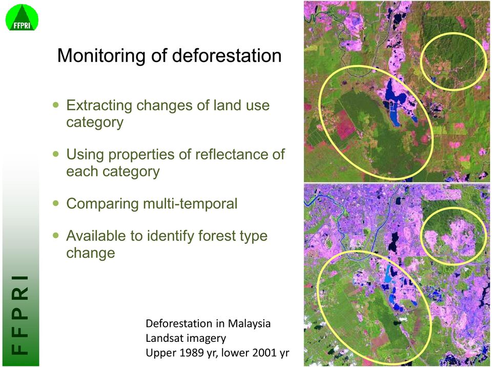Comparing multi-temporal Available to identify forest type