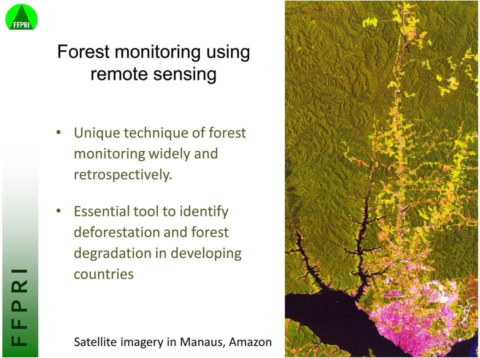 Essential tool to identify deforestation and forest