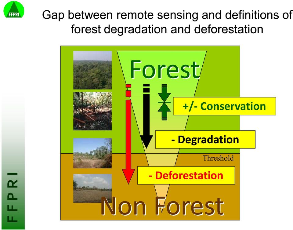 deforestation Forest +/- Conservation -