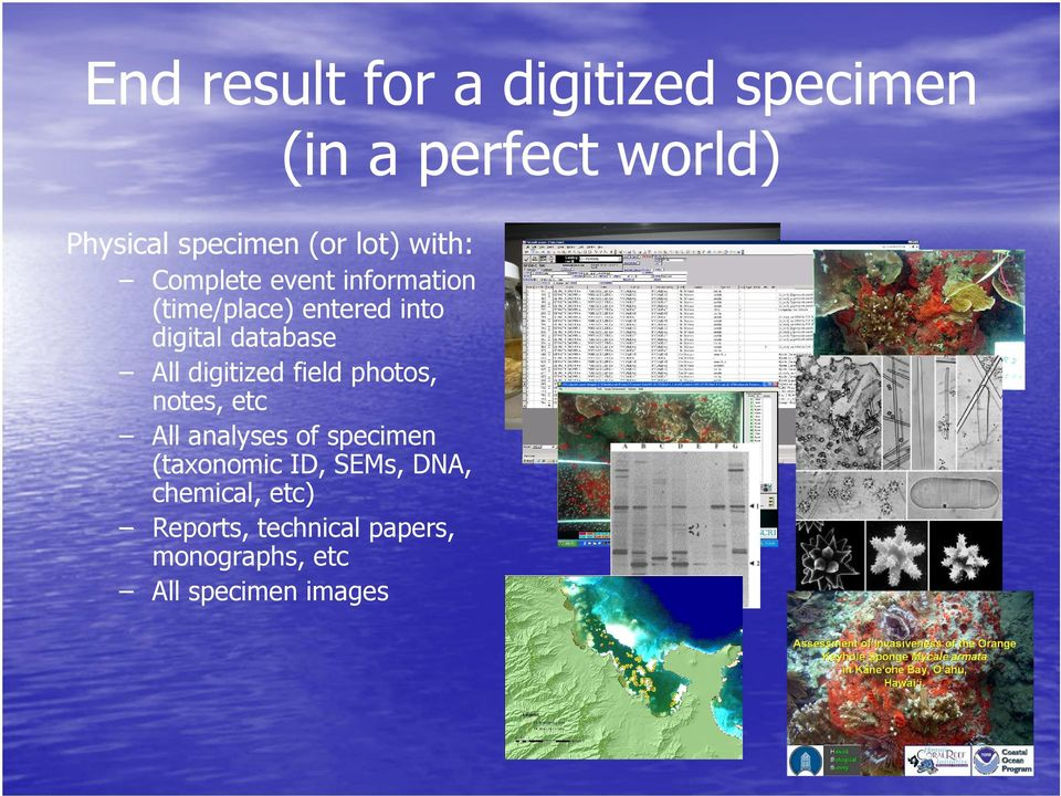 All digitized field photos, notes, etc All analyses of specimen (taxonomic ID,