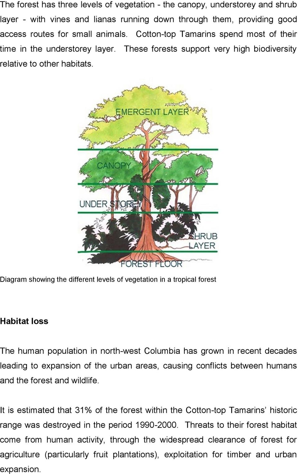 Diagram showing the different levels of vegetation in a tropical forest Habitat loss The human population in north-west Columbia has grown in recent decades leading to expansion of the urban areas,