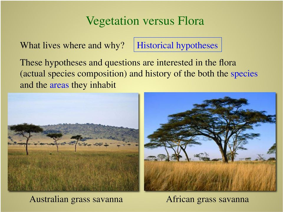 interested in the flora (actual species composition) and