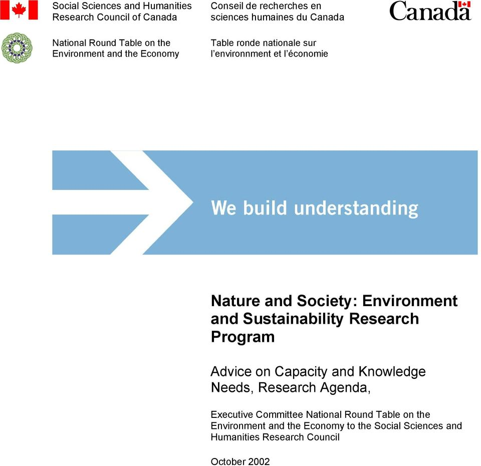 Environment and Sustainabiity Research Program Advice on Capacity and Knowedge Needs, Research Agenda, Executive