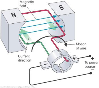 ELECTRIC MOTOR Converts electrical energy to mechanical energy Induction motor to turn the anode at a very high speed to dissipate heat during x-ray production Consists of rotor and stator Simple DC