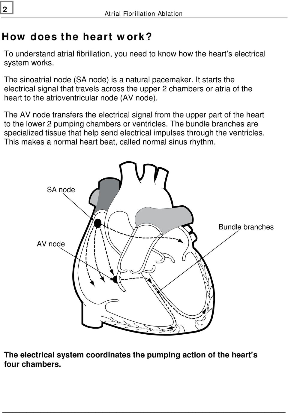 It starts the electrical signal that travels across the upper 2 chambers or atria of the heart to the atrioventricular node (AV node).